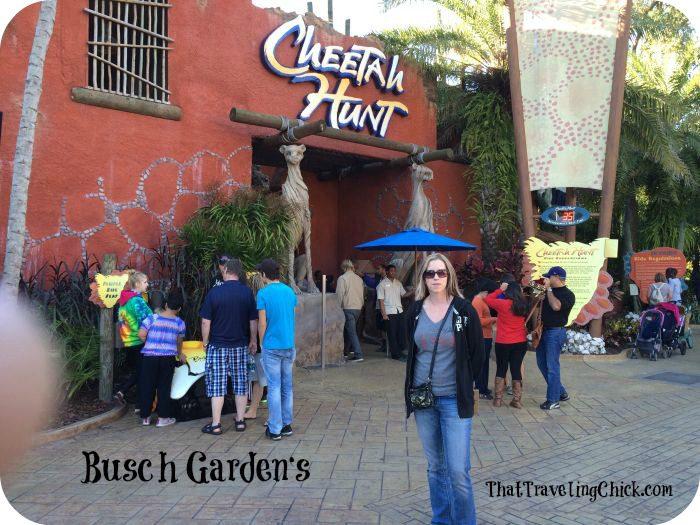 Busch Gardens Tampa Florida  #buschgardens #tampaflorida #florida #tampa #amusementpark #cheetahhunt