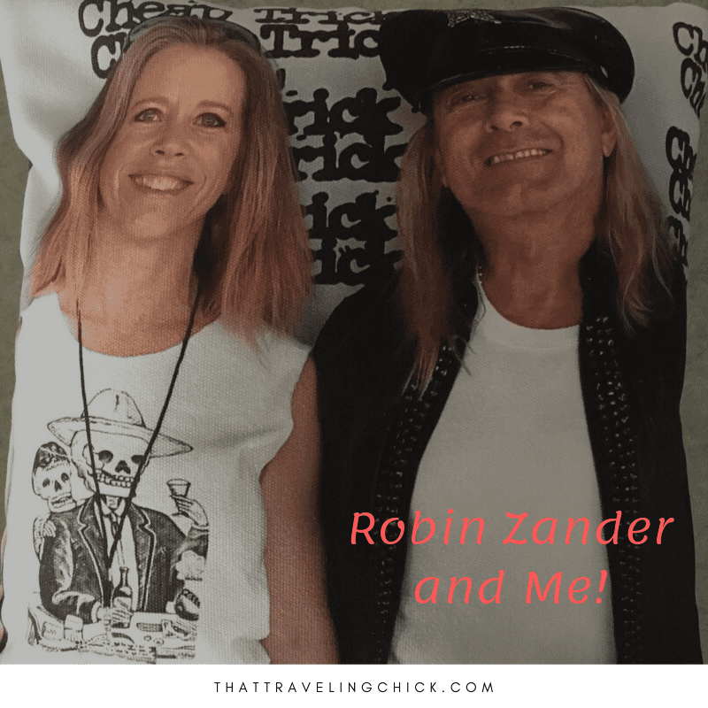 Robin Zander Pillow